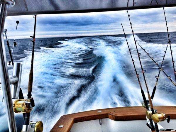 128 best fishing favorites images on pinterest saltwater for Deep sea fishing atlantic city