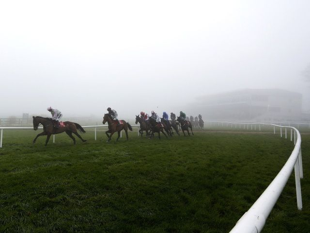 Timeform Irish SmartPlays: Saturday November 12  https://www.racingvalue.com/timeform-irish-smartplays-saturday-november-12/  Betfair, Clonmel, Down Royal, Galway, Naas, Punchestown, Thurles, Timeform, Tramore