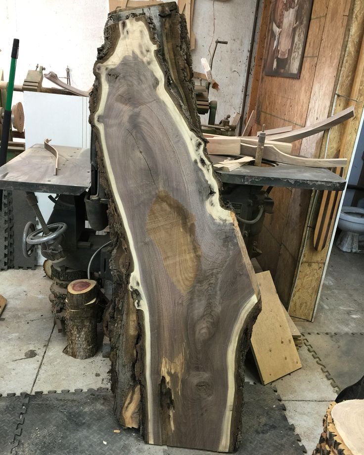 "Flattening some really awesome Canadian Black Walnut slabs. These are 1.5"" to 2"" thick about 5' long. This was a very old Walnut tree salvaged from down town Toronto milled & dried by us. Email if interested we have 6 of these beautiful slabs dry, flat ready to sand. Info@canadianwoodworks.com"