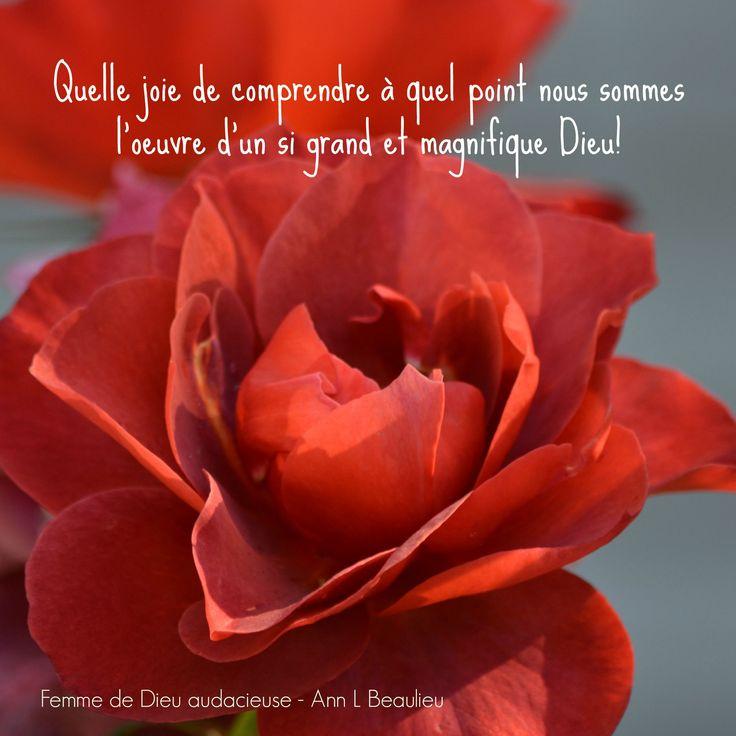 """Une citation de mon livre - """"Femme de Dieu audacieuse"""" voir le lien. Une rose de chez moi :)"""