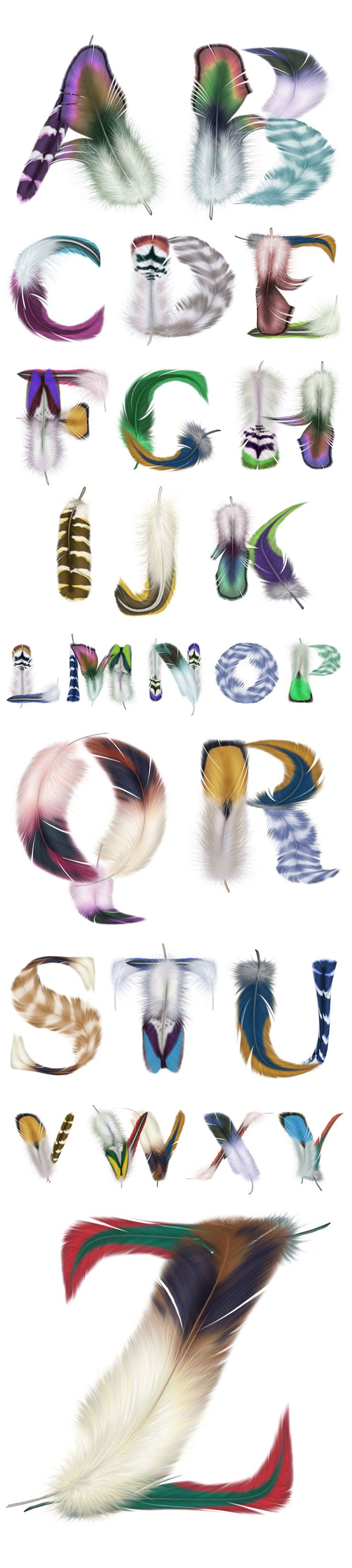 Tipografía con plumas de pájaros