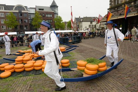 Grass #cheesemarket Alkmaar