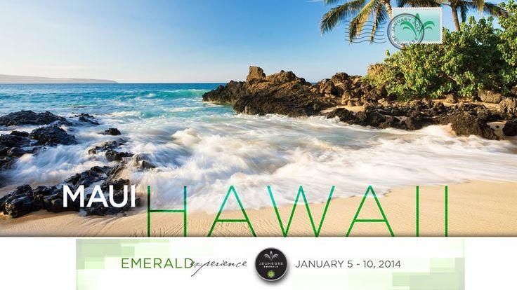 2014 Jeunesse Emerald Hawai Promotion