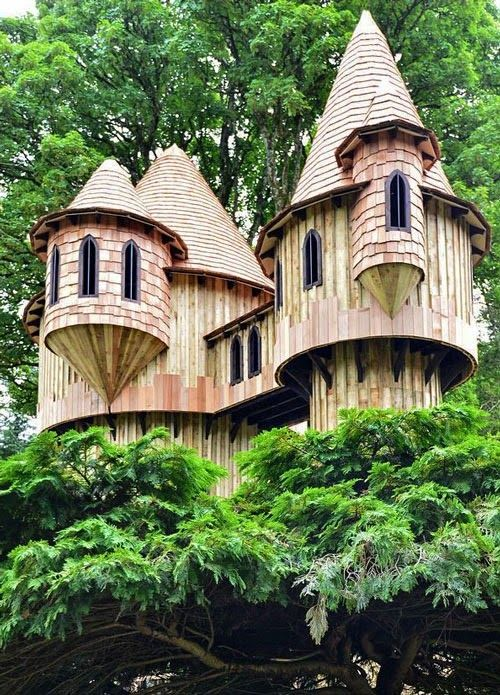 Large Tree Houses with amazing wooden Tree House design for magic tree house  series