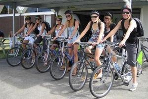 Bike D'Vine Cycle Winery Tours and Sightseeing