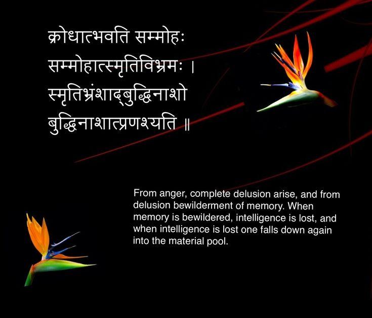 Sanskrit quote 13क्रोधात्भवति सम्मोहः