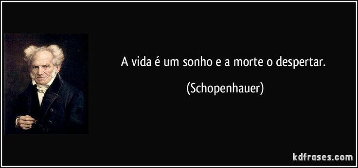 schopenhauer frases sobre a vida - Pesquisa Google