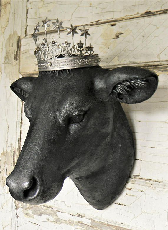 Best 25 Cow Head Ideas Only On Pinterest Cow Skull