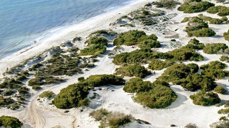 Playa de Es Trenc, Mallorca