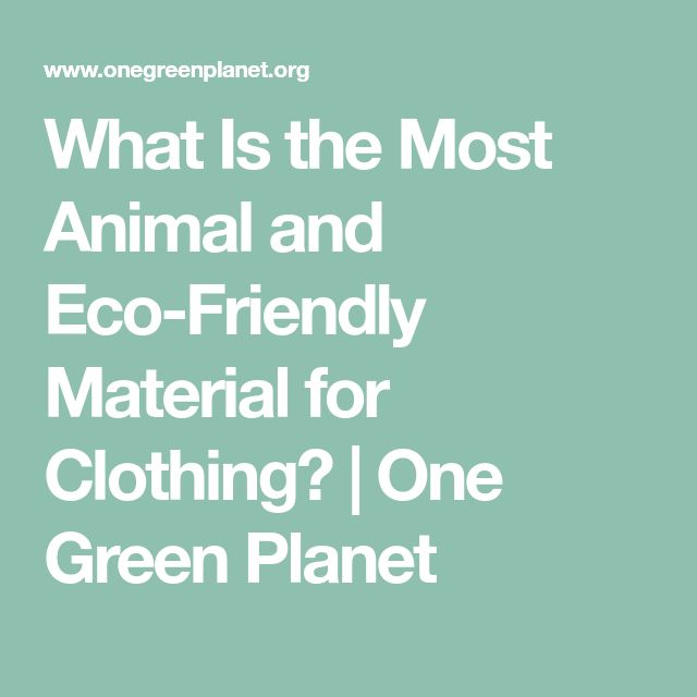 What Is the Most Animal and Eco-Friendly Material for Clothing? | One Green Planet