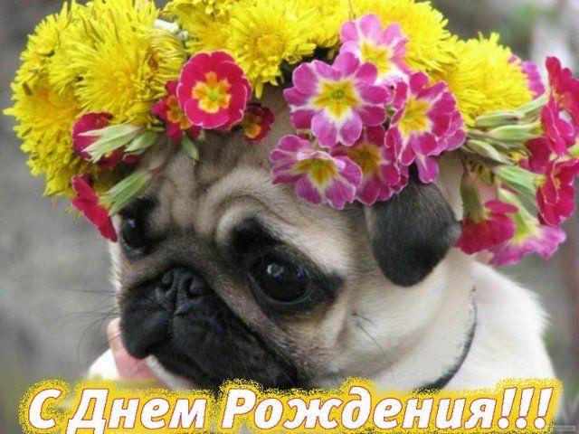 Плейкаст с днем рождения мужчине на казахском