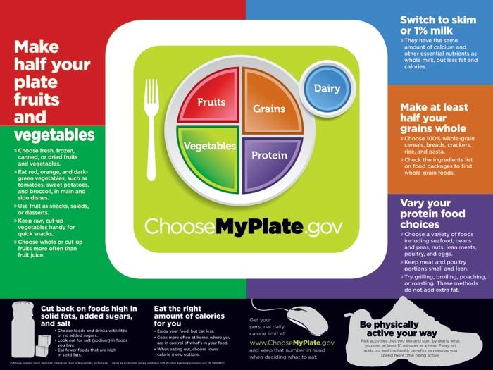 Food Nutrition Guidelines Healthy Adults