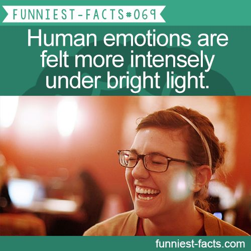 Human emotions are felt more intensely under bright light. MORE OF FUNNIEST-FACT… – Funniest Facts