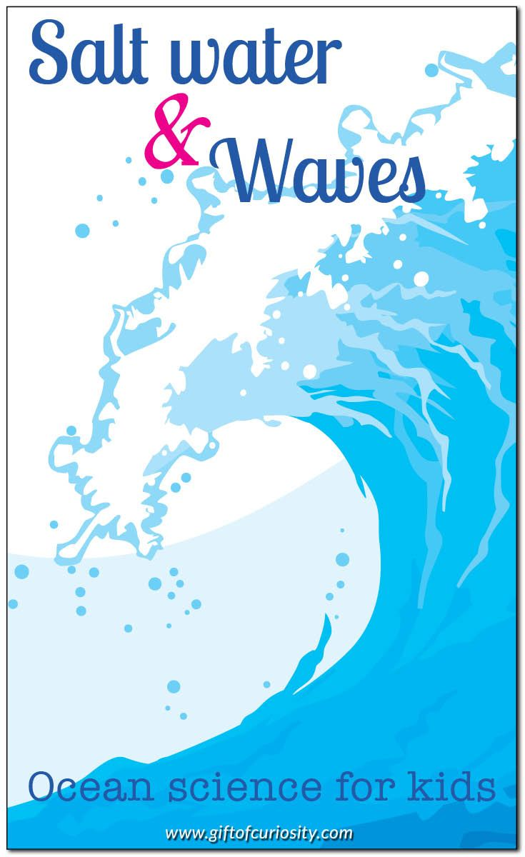 Learning about ocean salt water and waves   Ocean science activities for kids    Gift of Curiosity