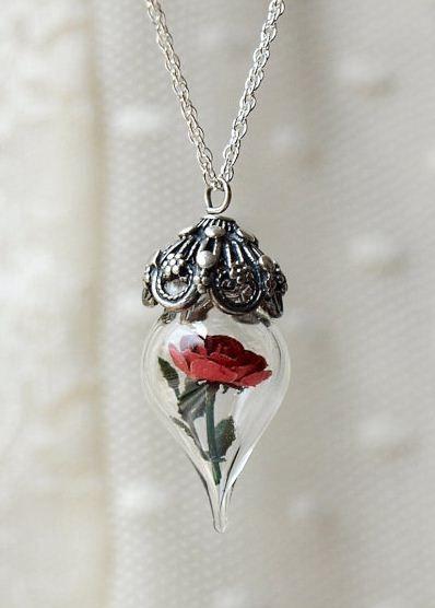 A rosa do Pequeno Príncipe!!!