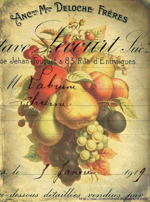 Postal frutas vintage.