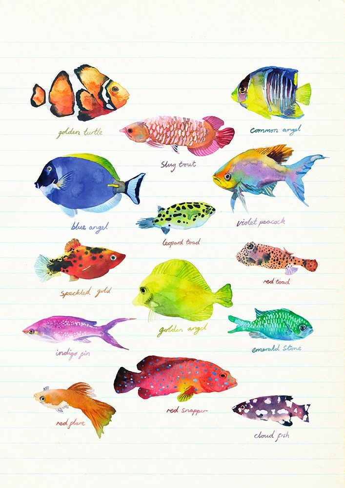 """""""Fish"""": High quality Art Print by London based illustrator Marcel George. Archival inks on matte, ultra smooth 310g cotton rag, A3/A2, via orangerie-prints.com"""