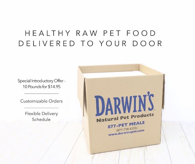 Affordable Raw Food Delivery For Dogs
