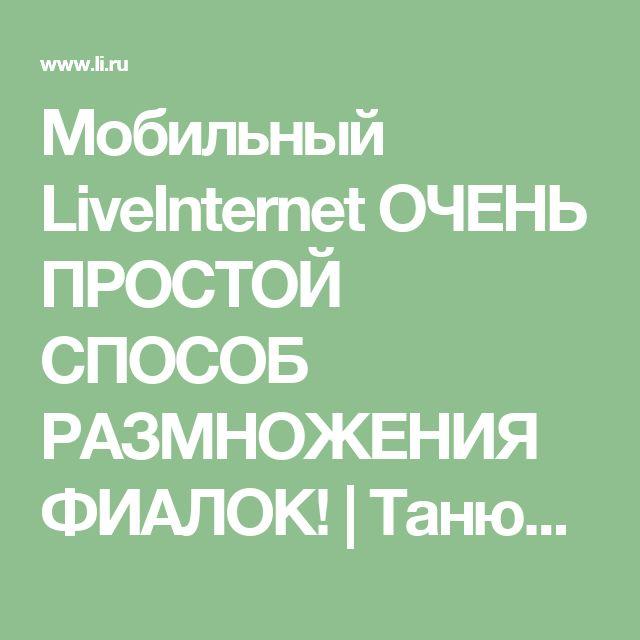 Мобильный LiveInternet ОЧЕНЬ ПРОСТОЙ СПОСОБ РАЗМНОЖЕНИЯ ФИАЛОК! | ТанюшкА_5 - Дневник ТанюшкА_5 |