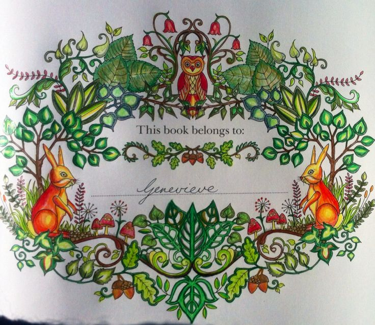 Title Page Of Enchanted Forest Black And White Design By Johanna Basford