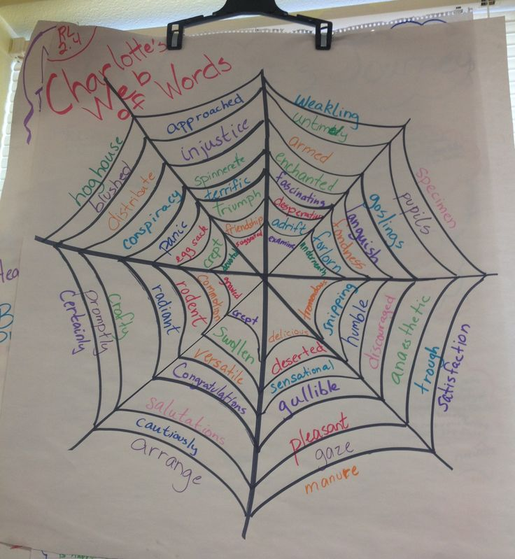 Charlotte's Web of Words anchor chart