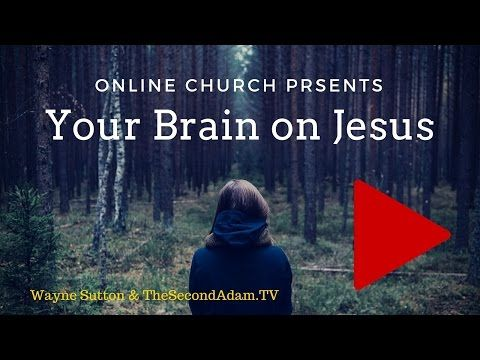 » This Is Your Brain on Jesus! Jesus and the Reticular Activating System – Online Church with Wayne Sutton