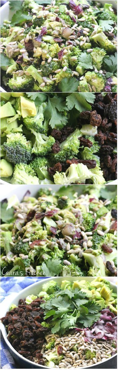 Healthy Creamy Broccoli Salad. Perfect for Summer BBQ's. Made this the other day and everyone had THREE helpings of salad! Tangy slightly sweet and delicious! #vegan