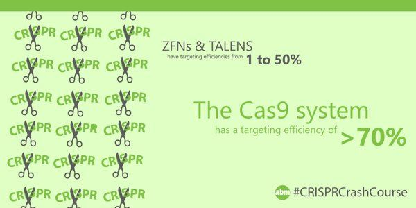 Cas9 is ridiculously good at targeting DNA! Especially compared to ZFNs and TALENs that have targeting efficiencies of only up to 50%. #CRISPRCrashCourse #CRISPR