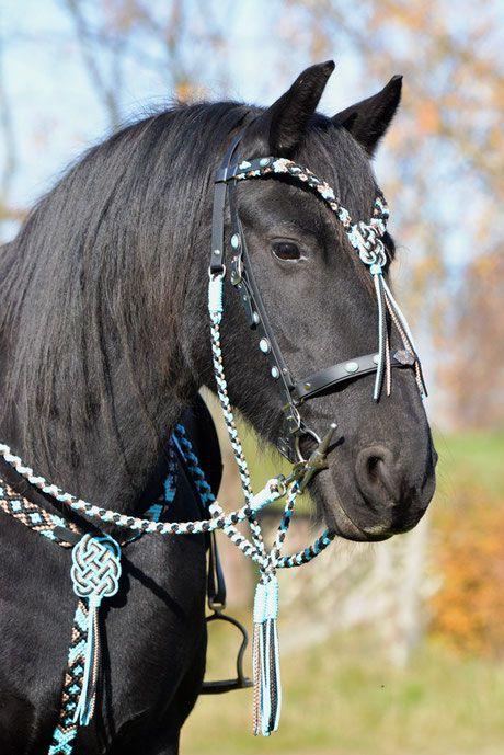 Kaltblut Trense Rot / Schwarz / Silber - MH.Flechtdesign!Handgefertigte Unikate für Pferd & Hund