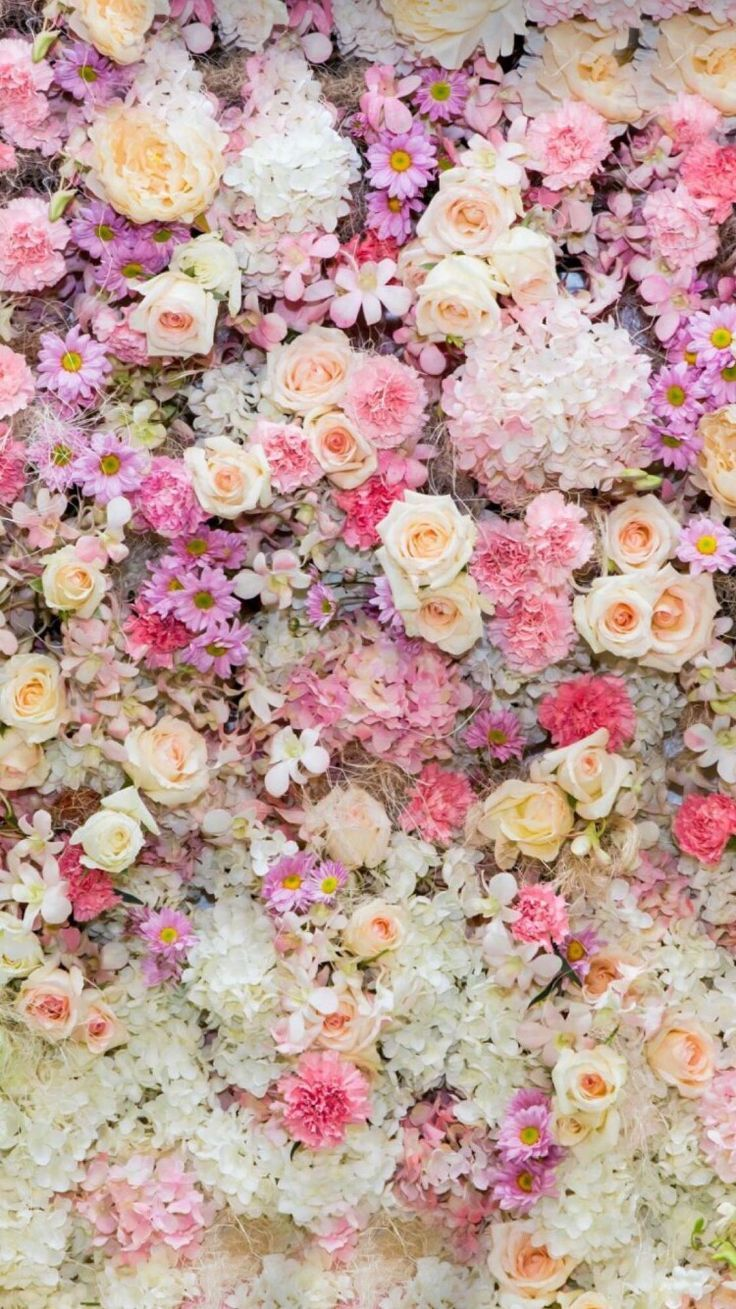 Flower Wall Wallpaper Nature Flowers Flower Backgrounds Flower Background Wallpaper