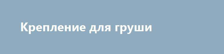 Крепление для груши http://brandar.net/ru/a/ad/kreplenie-dlia-grushi/  Настенное крепление настенное для боксёрского мешка или груши.Расстояние от стены - 60 см.Допустимый вес боксёрского мешка или груши - 70 кг.Производитель - Украина.