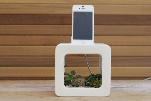 iPhone Docking Station Doubles As A Flower Pot: Gadgets, Ipod, Dock Stations, Flower Pots, Acoustic Amplifi, Iphone Dock, Small Plants, Design, Natural Acoustic