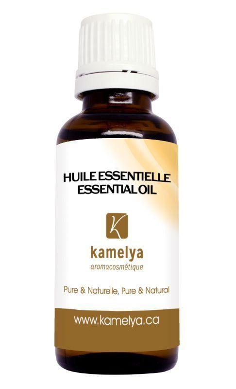 Par son arôme et ses propriétés, l'huile essentielle de bois de hô est presque identique à l'huile essentielle de bois de rose. L'huile essentielle de bois de hô est une huile essentielle efficace aux arômes raffinés. Ses propriétés antibactériennes, anti-infectieuses, antivirales, antifongiques et antiparasitaires traitent les pathologies virales et bactériennes. De plus, elle est stimulante pour l'immunité. L'huile essentielle de bois de hô est utilisée pour se prémunir des maux d'hiver…
