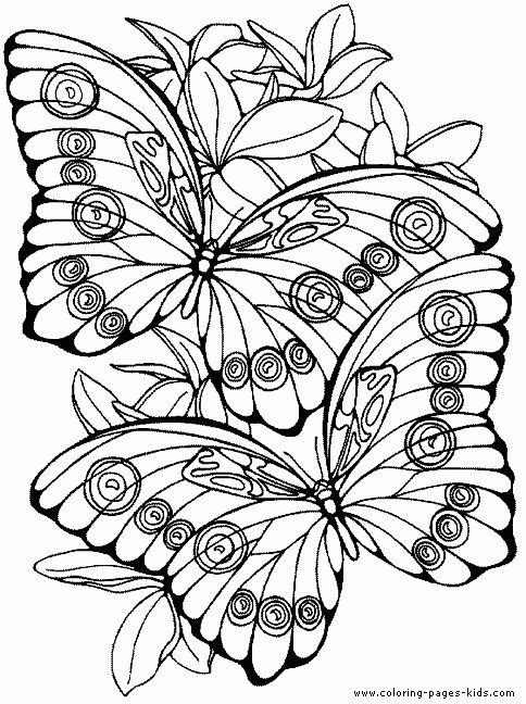photograph relating to Free Printable Butterfly Coloring Pages Adults identify Printable Butterfly Coloring Web pages For Grownups - Fjushis with