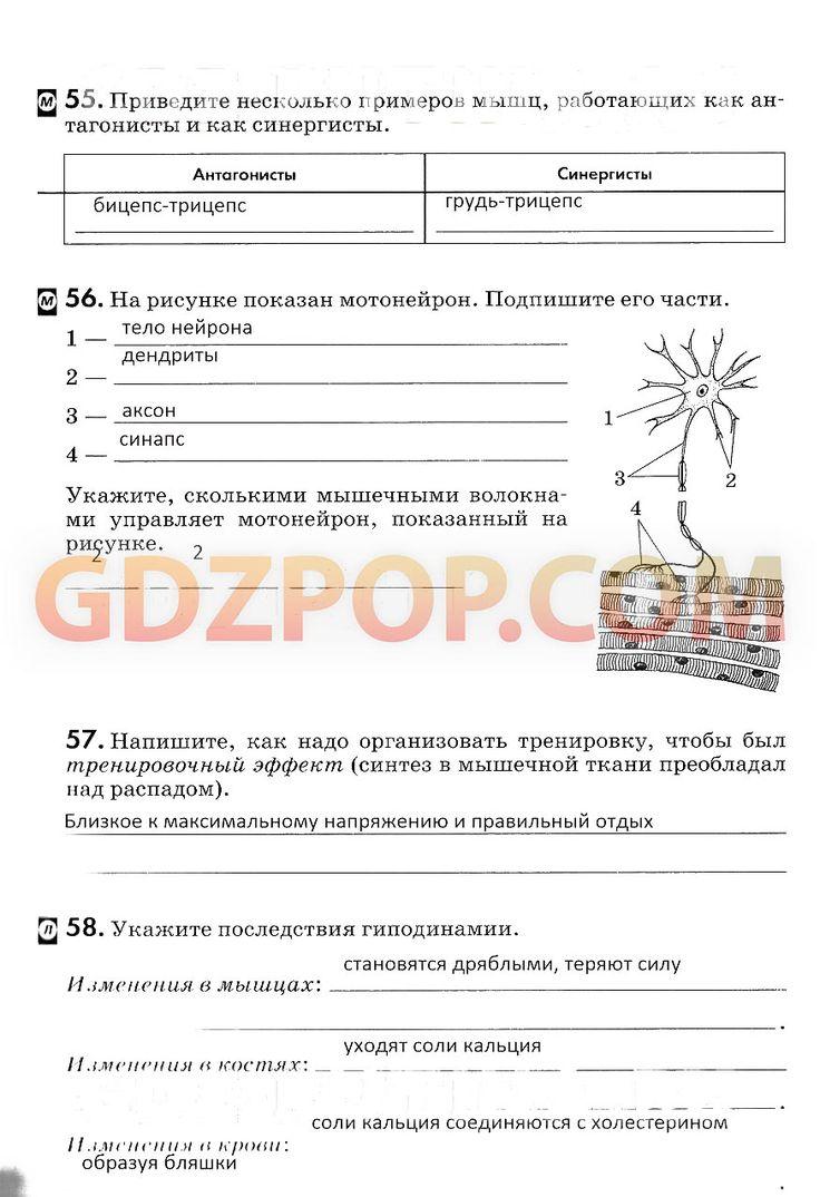 Электронный учебник сусветнай гісторыі новага часу 8 клас у.с.кошалёва