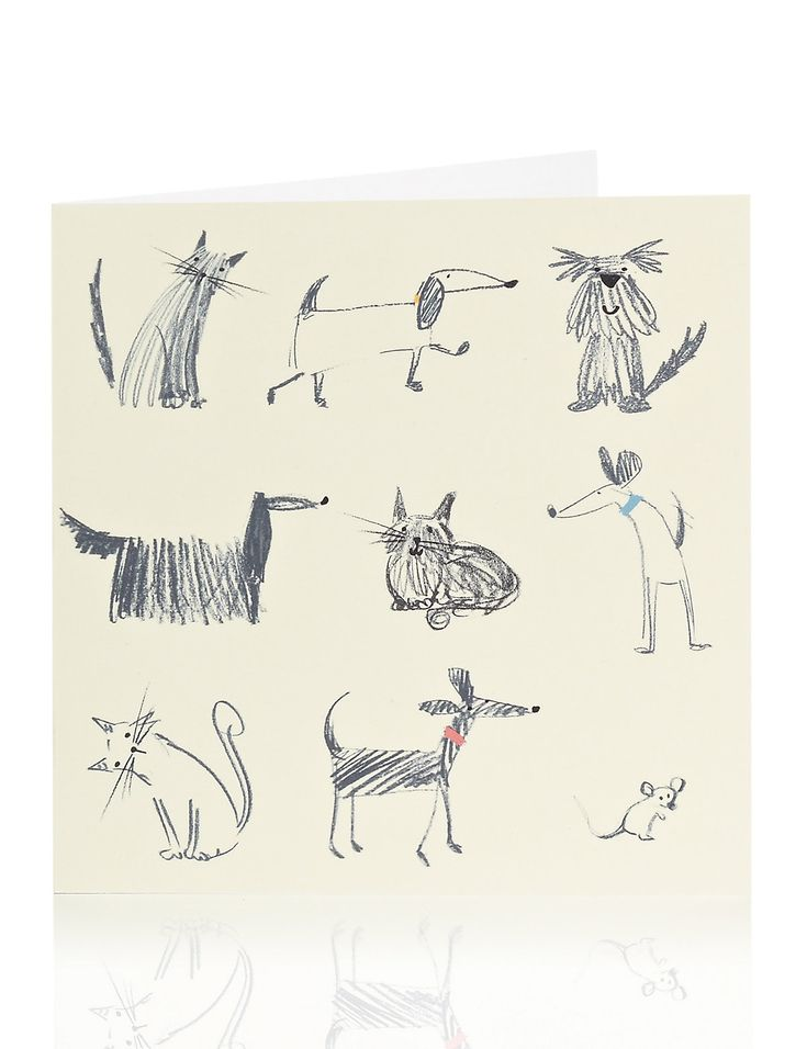 Sketchy Dog  Cat Blank Card | MS