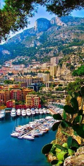 Monti Sacour / Monaco!