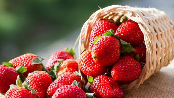 Zavařovací vychytávky: Jak vyrobit skvělé marmelády a ušetřit?