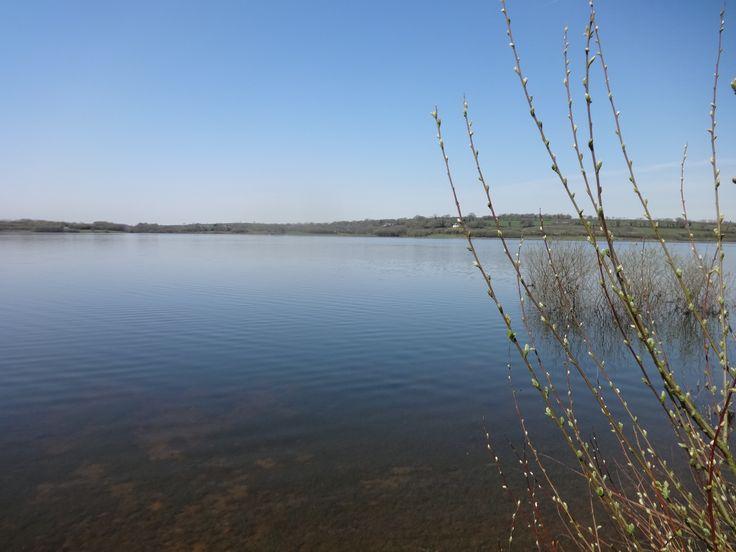 Roadford Lake by Angela C.