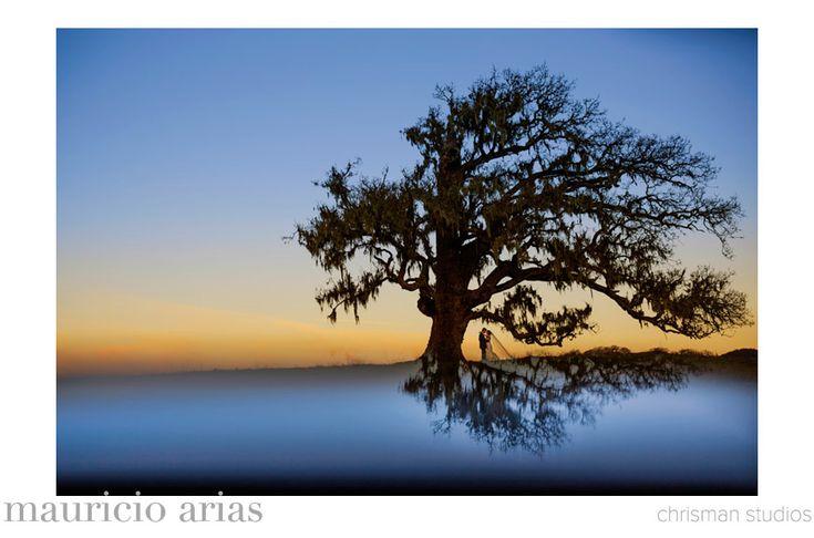 Best Wedding Photo of 2013 - Mauricio Arias of Chrisman Studios - California wedding photographer