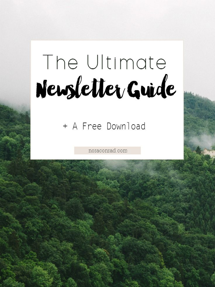 How to build an email list in Mailchimp quickly and efficiently. How to use Mailchimp to send campaigns, RSS feeds and use the reports to track your progress.