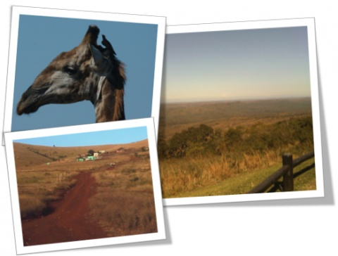 Our home away from home - The Shongololo Adventure | Spice4Life