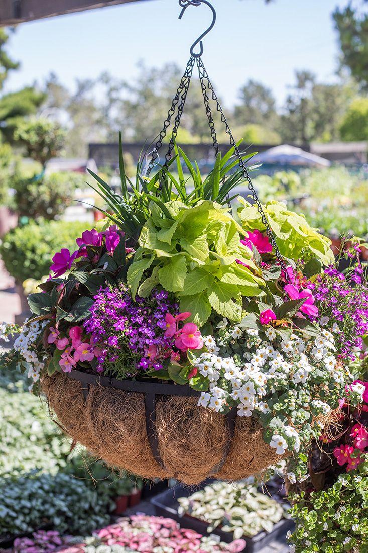 Garden Arrangements 77 best everyday garden arrangements images on pinterest | flowers
