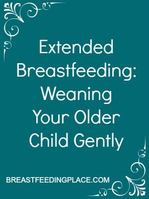 Extended Breastfeeding: Weaning Your Older Child Gently   l   www.BreastfeedingPlace.com   #breastfeeding #weaning