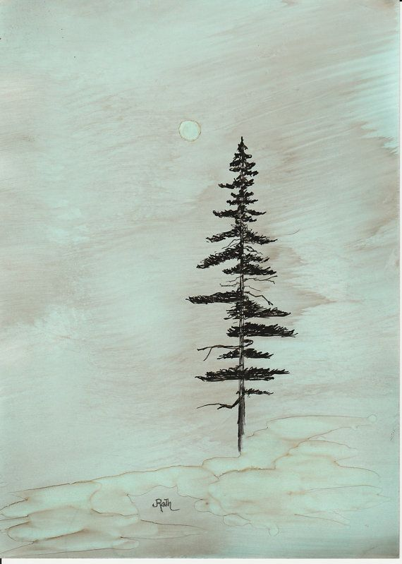 Ink Drawing Coastal Redwood matted backed ready by JRathDesigns