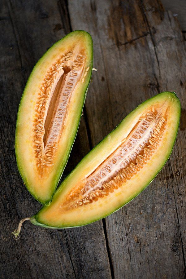 """Germ 4-10 days Heirloom 1883 A very old heirloom melon, still an interesting and delicious novelty. Fruits are about 20"""" long and 4"""" in diameter, tapering at each end similar to a banana. The flesh is"""