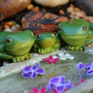 Includes mum, dad and baby green frog. A sweet little collection straight out of tropical Far North Queensland.    Length: 3.5 –
