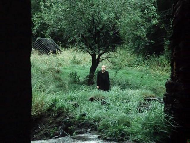 Stalker (1979)  Andrei Tarkovsky - Writer other side of the tree