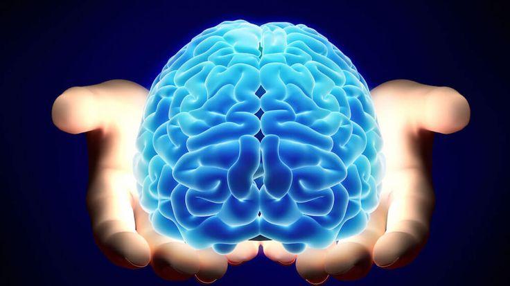 Τέλος στην παχυσαρκία; Επιστήμονας ανακάλυψε «διακόπτη» λίπους στον εγκέφαλο