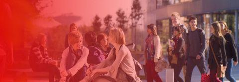 Yurtdışı Eğitim alanına dayalı birçok özel danışmanlık firmaları ise bu alanda öğrencilerin yanında olarak kendilerine en iyi üniversiteyi seçmelerinde yardımcı olmaktadır. Özellikle'de bu son zamanlarda Türkiye'den öğrencilerin en çok tercihte bulunduğu Ukrayna ve Bulgaristan üniversiteleri rağbet görmektedir.
